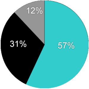 Pie Chart Template - Website mgm (3-31-16)
