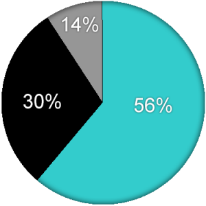 Pie Chart Template - Website mgm (6-30-16)