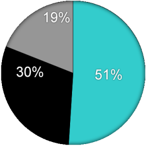 Pie Chart Template - Website MGM (12-31-16) revised