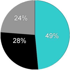 Pie Chart Template - Website (9-30-17)