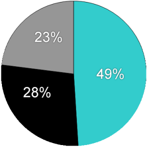 Pie Chart Template - Website (3-31-18)
