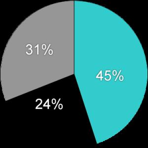 Pie Chart Template - Website (3-31-20)